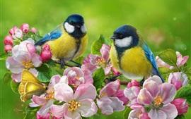 Aperçu fond d'écran Deux mésanges, des oiseaux, des fleurs de pomme rose