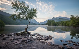 Preview wallpaper Wales, UK, trees, mountains, lake, water reflection