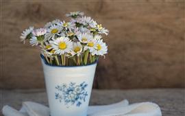 White flowers, daisy, vase