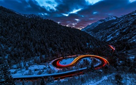 Winter, forest, night, bending road, snow
