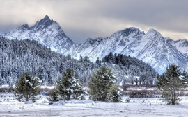 Preview wallpaper Winter, snow, trees, mountains, nature scenery