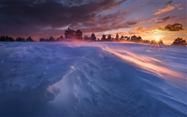 Preview wallpaper Winter, snow, trees, sun rays, sunset