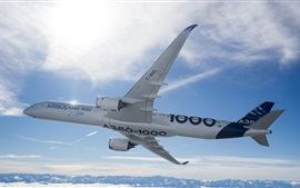 Preview wallpaper Airbus A350-1000 plane