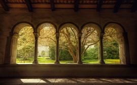 Arch windows, trees, garden