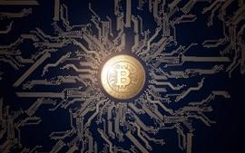 Bitcoin, dinheiro, PCB, design criativo