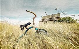 Bicicleta de juguete roto, hierba, casa