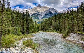 Canada, Albert, stones, clouds, river, trees, mountains