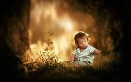 Симпатичный маленький мальчик сидит на траве, ребенок