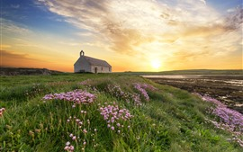 England, Wales, sunset, house, wildflowers, clouds