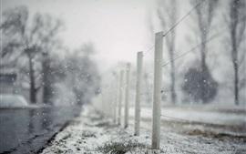 Cerca, neve, inverno