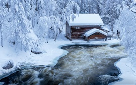 Finland, snow, river, trees, hut