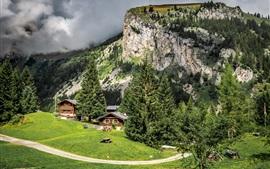 Francia, montaña, árboles, casas, camino