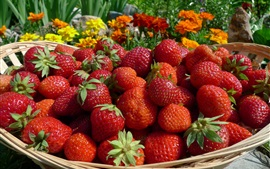 Preview wallpaper Fresh strawberry, basket, fruit