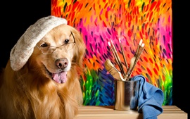 Preview wallpaper Funny animal, dog painter, hat, glasses, brushes