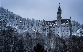 Preview wallpaper Germany, Bayern, Neuschwanstein Castle, trees, snow, winter