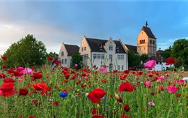 Preview wallpaper Germany, houses, poppies