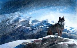 회색 늑대, 산, 눈, 겨울, 예술 그림