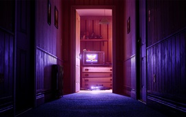Дом, комната, дверь, телевизор