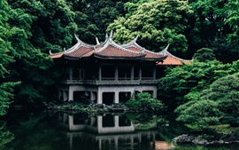 Preview wallpaper Japan, Tokyo, temple, trees, pond