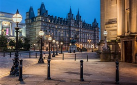 Preview wallpaper Liverpool, England, city, lamps, night