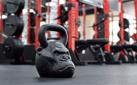 Dumbbell principal do macaco, gym