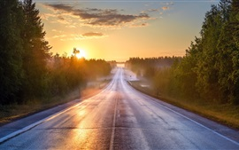 Preview wallpaper Morning, road, forest, fog, sunrise