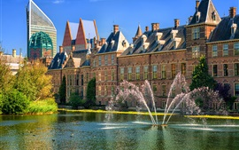 Preview wallpaper Netherlands, Hague, fountains, city