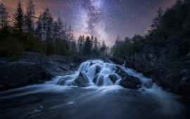 Noche, río, árboles, estrellado, estrellas