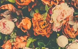미리보기 배경 화면 오렌지와 핑크 모란, 인공 꽃
