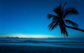 Preview wallpaper Palm tree, silhouette, beach, sea, dusk