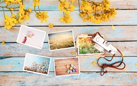 Aperçu fond d'écran Photos, fleurs, appareil photo