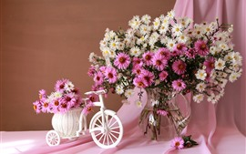 Pink and white asters, vase, toy bike