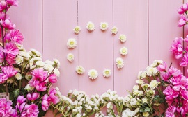 Preview wallpaper Pink and white flowers, wood background