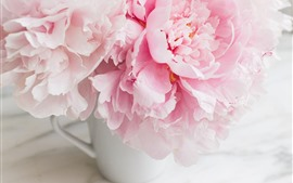 Preview wallpaper Pink peonies, cup