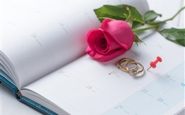 Preview wallpaper Red rose, rings, Valentine's Day