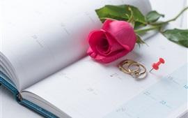 Aperçu fond d'écran Rose rouge, bagues, Saint Valentin