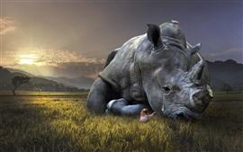 Aperçu fond d'écran Rhino tristesse, larmes, enfant fille, herbe, image créative