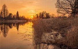 Río, juncos, puesta de sol