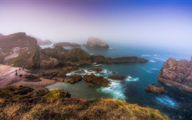 Scotland, coast, sea, rocks, fog, morning