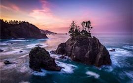 Mar, rocas, islas, árboles, paisaje de la naturaleza