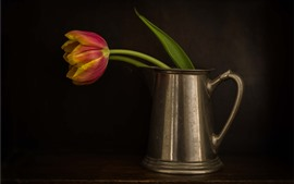 Preview wallpaper Single tulip, kettle
