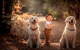 Preview wallpaper Smile little child and two dogs