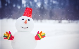 Preview wallpaper Snowman, colorful gloves, snow, winter