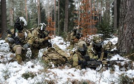 Soldiers, weapons, forest, snow