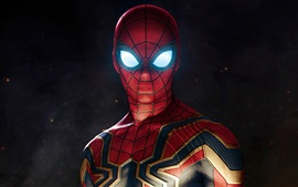 壁紙のプレビュー スパイダーマン、スーパーヒーロー、DCコミック、アート・ピクチャー