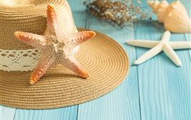 Preview wallpaper Starfish, seashell, hat