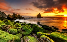 Preview wallpaper Stones, moss, sea, clouds, sunset