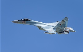 Preview wallpaper Su-35S multi-role fighter, blue sky
