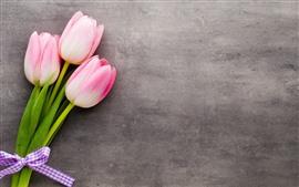 Tres tulipanes rosados, ramo, fondo gris