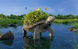 Tartaruga, lagoa, sapo, flores, grama, design criativo